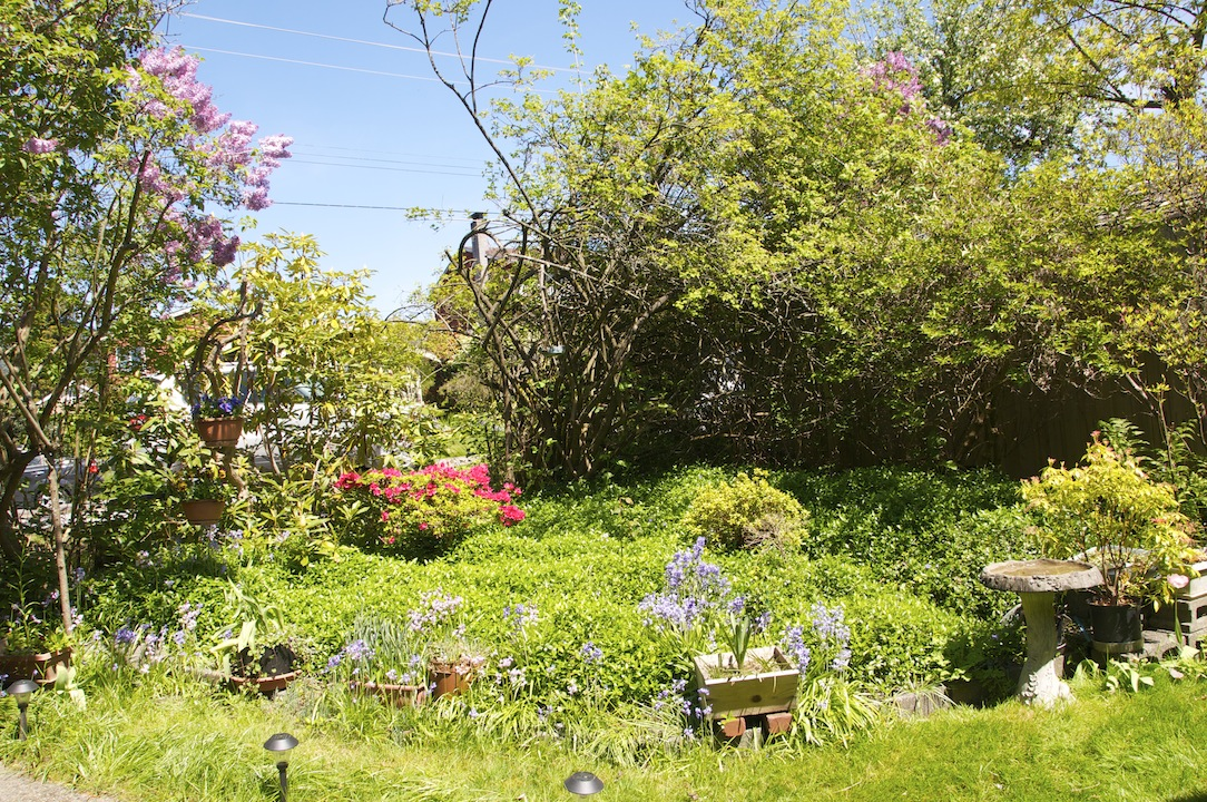 Image for 1286 Clyde Avenue